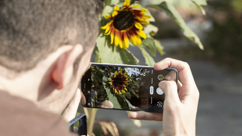 deleted photo recovery in android